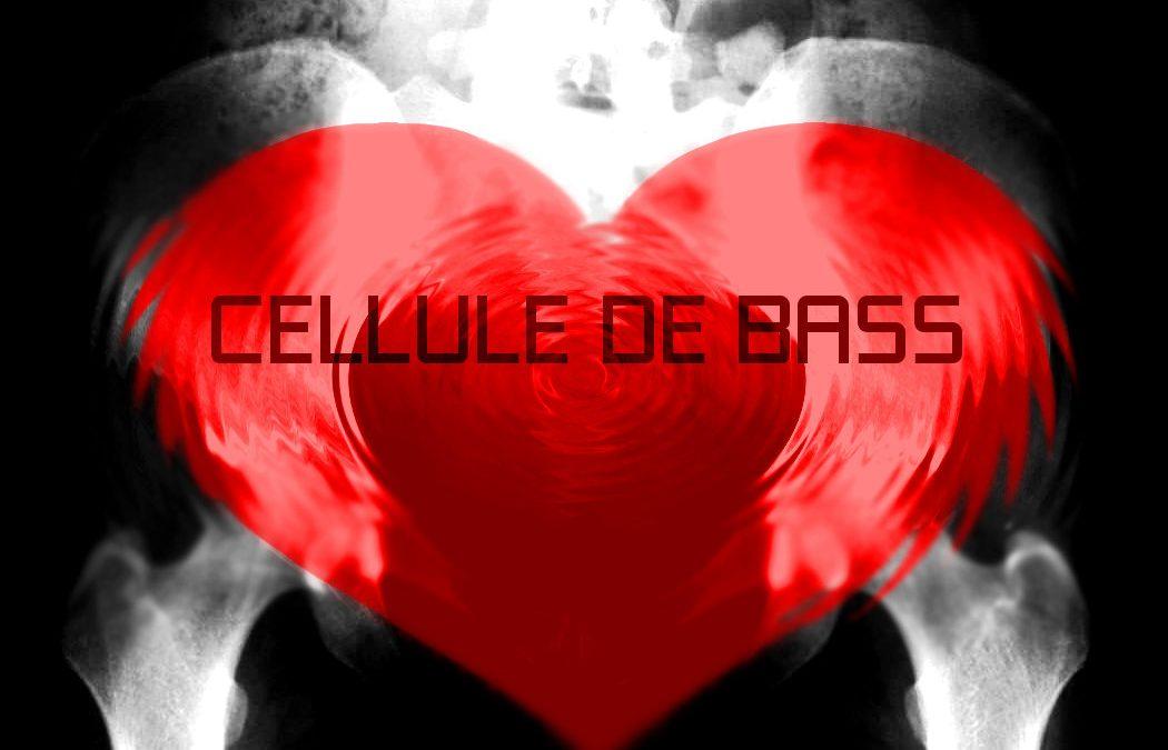 Cellule de bass